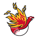 ChapFirebirdBaseball periscope profile