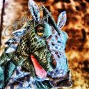 Soyracha periscope profile